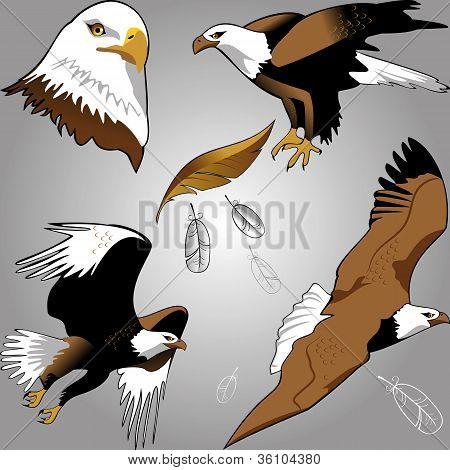Eagles.eps