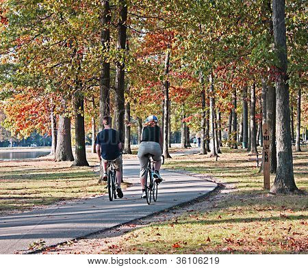 Bike riders at the park