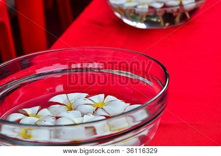 Floating Flower in the Bowl