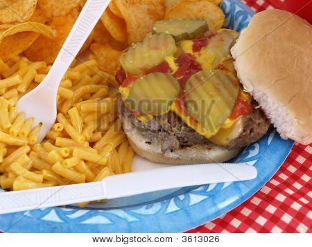 Picnic Burger