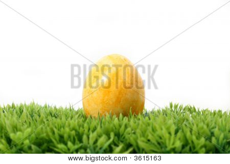 Yellow Easter Egg On Grass