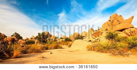 Panorama landscape of Hidden Valley in Joshua Tree National Park USA.