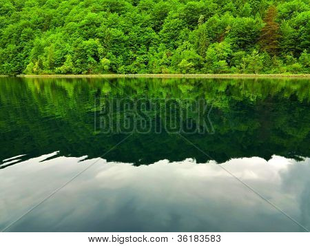 Lake Scene In Plitvice National Park
