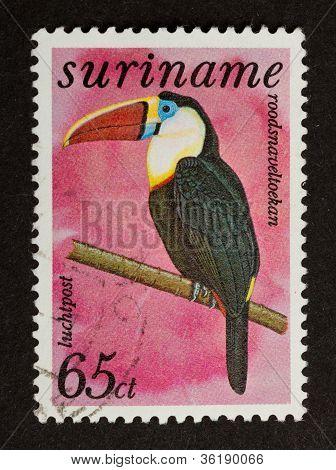 Suriname - Circa 1980: Stamp Printed In Suriname