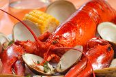 stock photo of lobster tail  - Delicious boiled lobster dinner with clams corn and potatoes - JPG