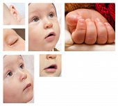 stock photo of groping  - collection of images with little baby boy - JPG