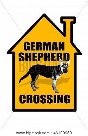 German Shepherd Crossing.