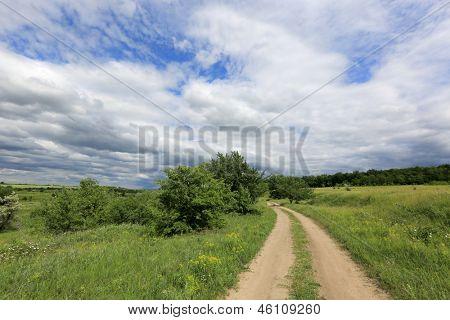 Summer scene with rut road in summer day, Ukraine