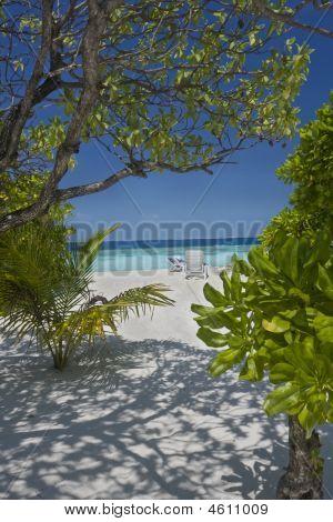 Tropical Beach On Maldives Islands