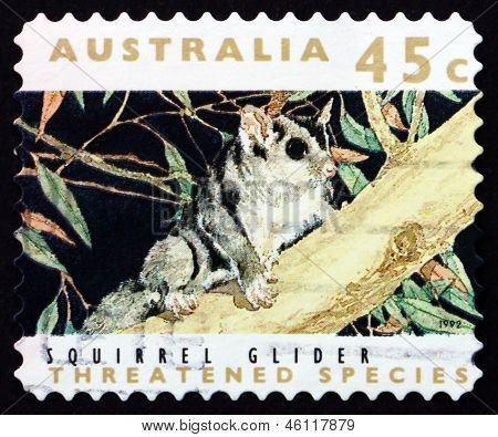 Postage Stamp Australia 1992 Squirrel Glider, Marsupial Mammal