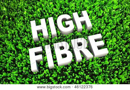 High Fiber Dietary Foods as a Concept on Grass