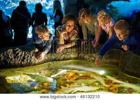Young woman and several children see after fishes in enlighted pool at oceanarium