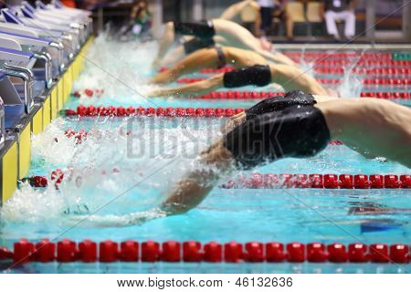 Group swimmers dive back into the water in the pool