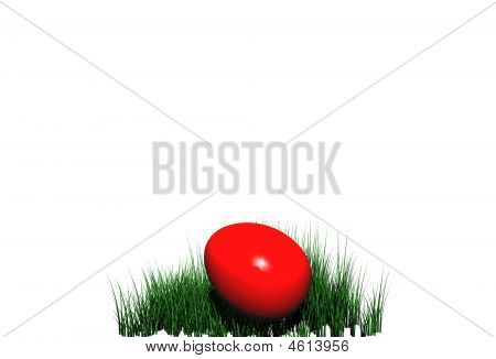 Easter Egg In Grass