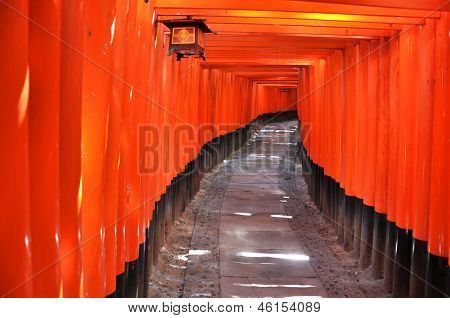 Through The Orange Gates