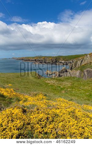 Welsh Coast Path Pembrokeshire West Wales