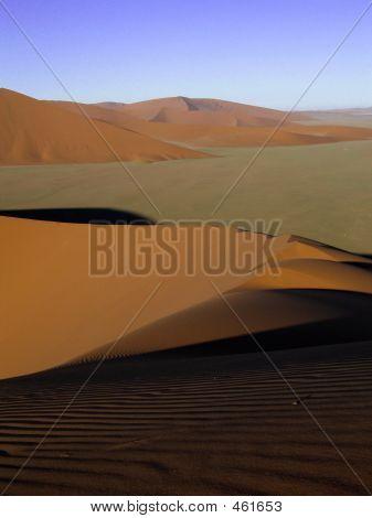 Namibia Desertfloor Tall