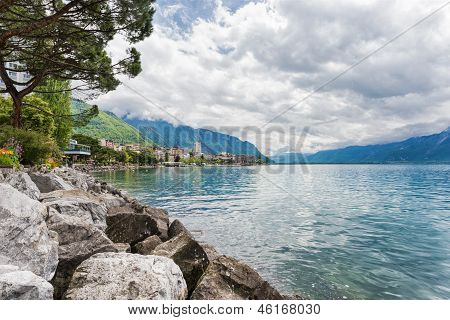 Flowers And Trees Near Lake, Montreux. Switzerland