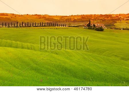 Tuscany Landscape With Fields And Farmhouse, Pienza, Italy
