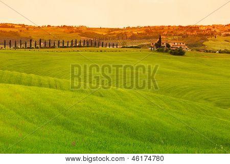 Tuscany Landscape With Fields And Farmhouse, Pienza, Italy