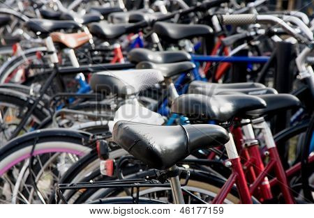 Bike Detail At Packed Bicycle Parking