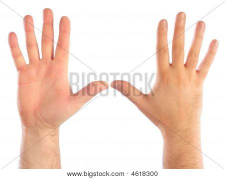 Male Hands Counting Number
