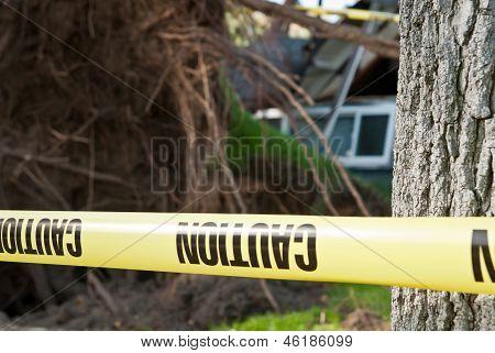 Zona de perigo de queda de árvore de cuidado