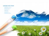stock photo of blue sky  - Wild daisies in the grass with summer blue sky - JPG