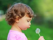 image of blowing  - Fun cute child blowing on dandelion flower on green summer background - JPG