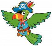 Flying Pirate Parrot