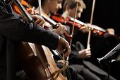 stock photo of violin  - Symphony concert a man playing the cello hand close up - JPG