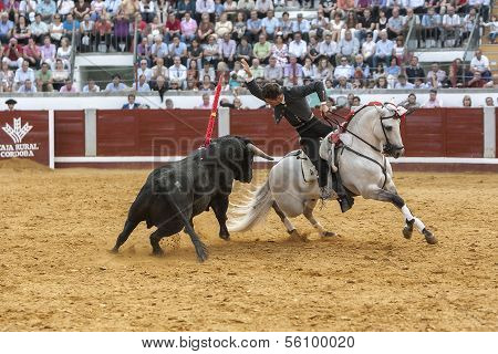 Spanish bullfighter on horseback Leonardo Hernandez bullfighting on horseback