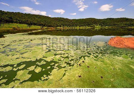 Tswaing Meteorite Crater Reserve