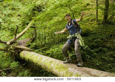 Nature - Walking