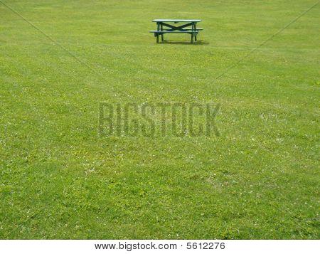 Bench in green grass