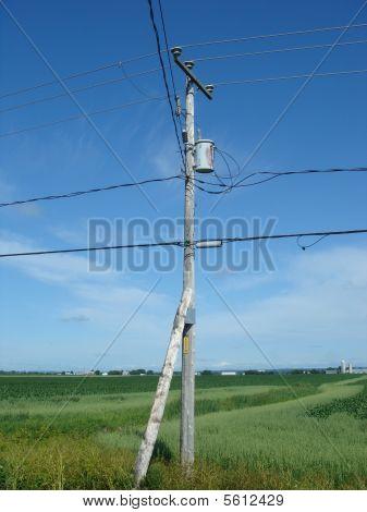 Electric pilone