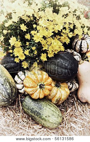 Autumn Outdoor Decor - nostalgic 4