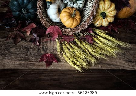 Harvest Vegetables on Wooden Table