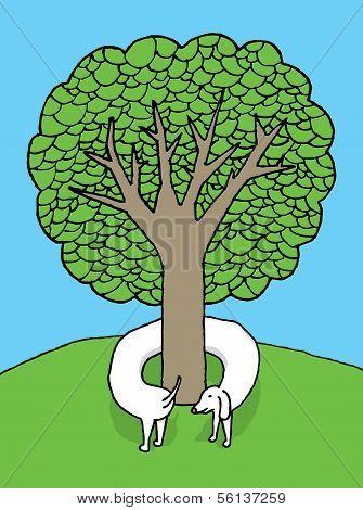 Tree Hugging Dog
