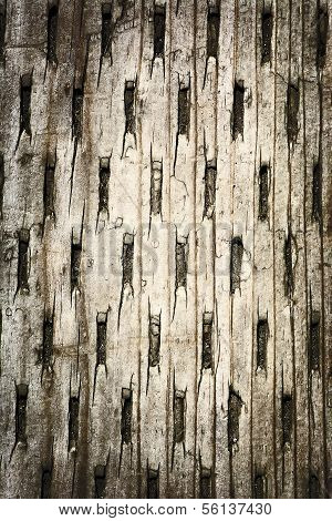 Wood With Pleated Pattern