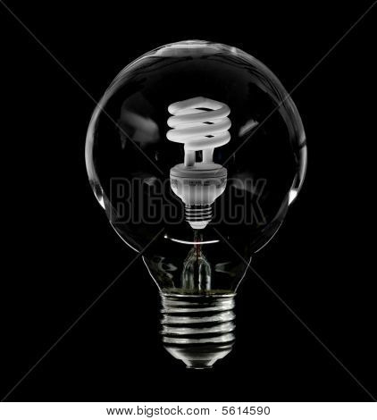 Incandescent Light Bulb With New Compact Florescent Bulb Inside