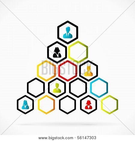Organizational pyramid