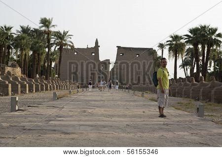 Pilonos Visitors
