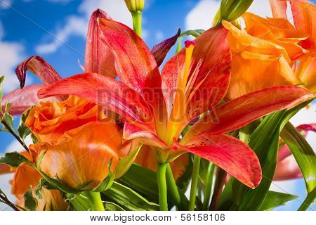 Daylilies And Orange Roses