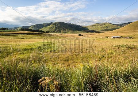 Mountains Summer Grasslands Landscape