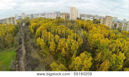 Power lines among trees with colorful foliage in park on Elk island at Moscow, view from unmanned quadrocopter.