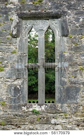 Acient Architecture of an Irish Castle