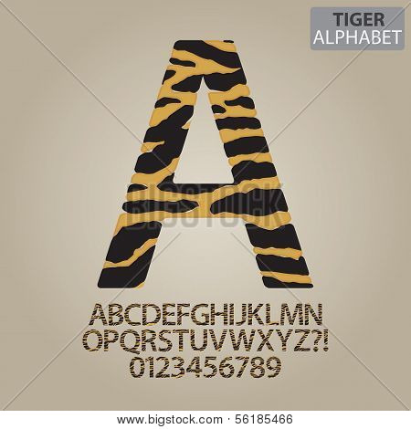 Tiger Stripe Alphabet And Numbers Vector