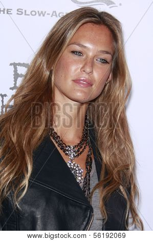 LOS ANGELES - SEP 7: Bar Refaeli at the In Touch VMA Post Party held at the Chateau Marmont, Hollywood, California, California. September 7, 2008.
