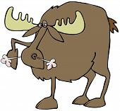 picture of stomp  - This illustration depicts an angry moose stomping its hoof and snorting - JPG